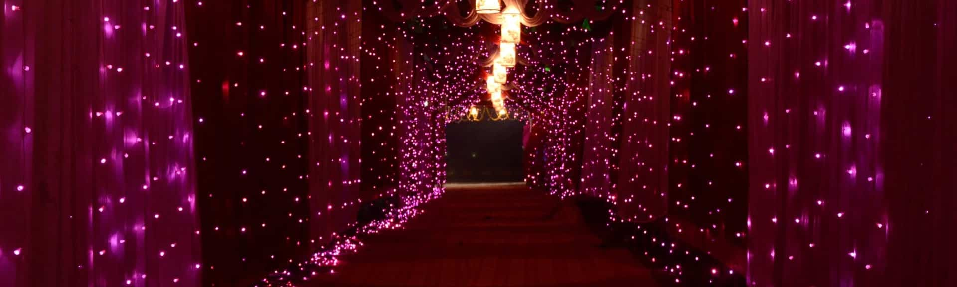 Indian House Wedding lights